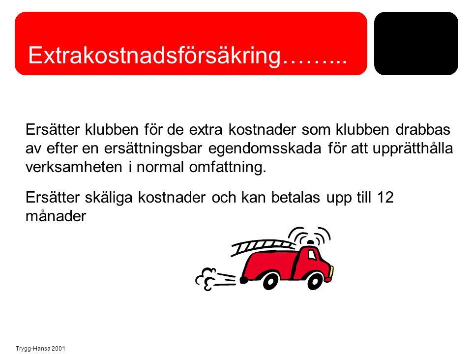 Trygg-Hansa 2001 Förmögenhetsbrottsförsäkring.