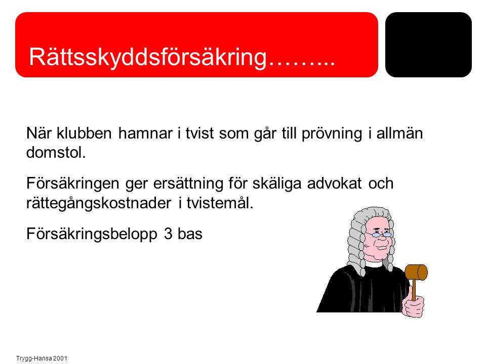 Trygg-Hansa 2001 Rättsskyddsförsäkring……... När klubben hamnar i tvist som går till prövning i allmän domstol. Försäkringen ger ersättning för skäliga