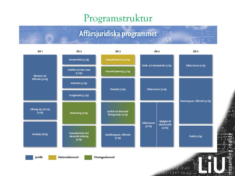 Programstruktur