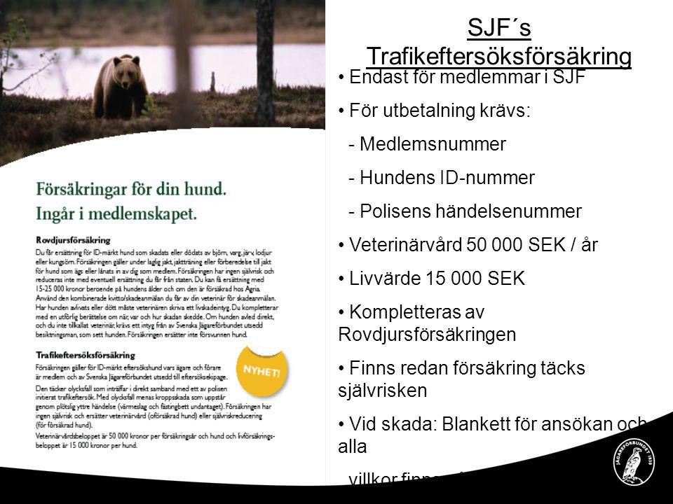 SJF´s Trafikeftersöksförsäkring • Endast för medlemmar i SJF • För utbetalning krävs: - Medlemsnummer - Hundens ID-nummer - Polisens händelsenummer •