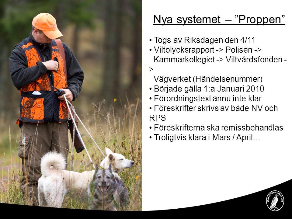 """Nya systemet – """"Proppen"""" • Togs av Riksdagen den 4/11 • Viltolycksrapport -> Polisen -> Kammarkollegiet -> Viltvårdsfonden - > Vägverket (Händelsenumm"""