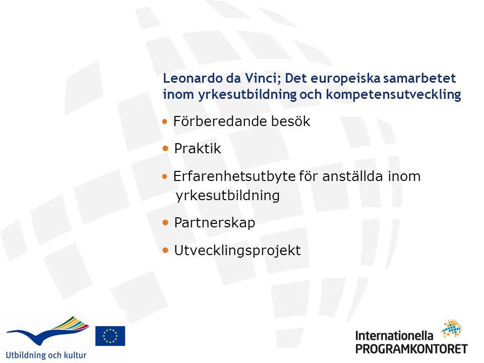 Leonardo da Vinci; Det europeiska samarbetet inom yrkesutbildning och kompetensutveckling • Förberedande besök • Praktik • Erfarenhetsutbyte för anstä
