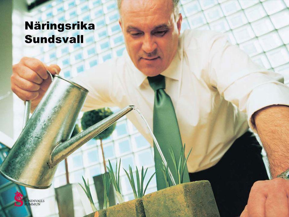 Metso Paper Sundsvall AB •Ledande inom tekniska lösningar, system och utrustning till massa-, pappers- och fiberskiveindustrier •Ca 700 anställda •Service and Technology Center •Tre affärslinjer; kemisk massa, mekanisk massa, panelboard •Omsättning ca 1,9 miljarder kronor