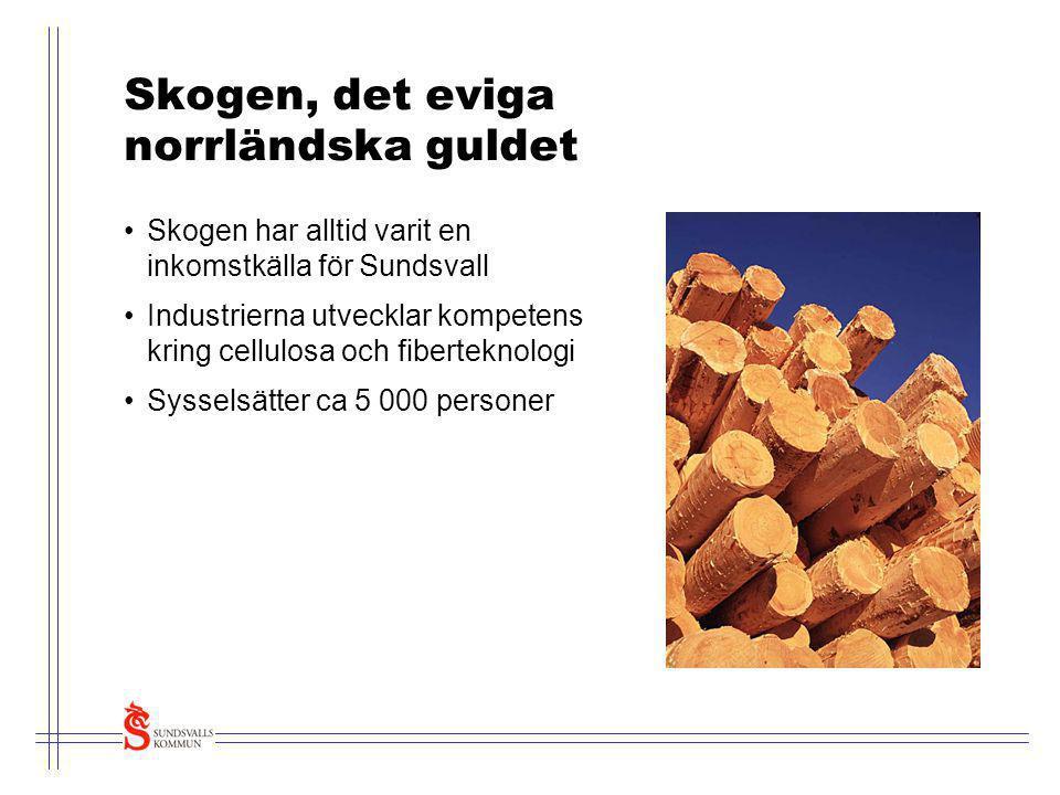 Skogen, det eviga norrländska guldet •Skogen har alltid varit en inkomstkälla för Sundsvall •Industrierna utvecklar kompetens kring cellulosa och fibe