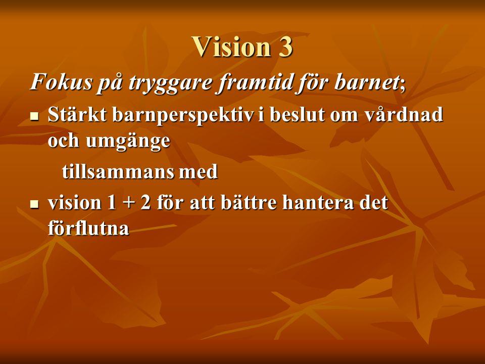 Vision 3 Fokus på tryggare framtid för barnet ;  Stärkt barnperspektiv i beslut om vårdnad och umgänge tillsammans med tillsammans med  vision 1 + 2