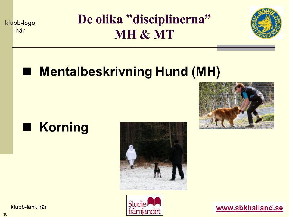 """www.sbkhalland.se klubb-logo här klubb-länk här 10 De olika """"disciplinerna"""" MH & MT  Mentalbeskrivning Hund (MH)  Korning"""