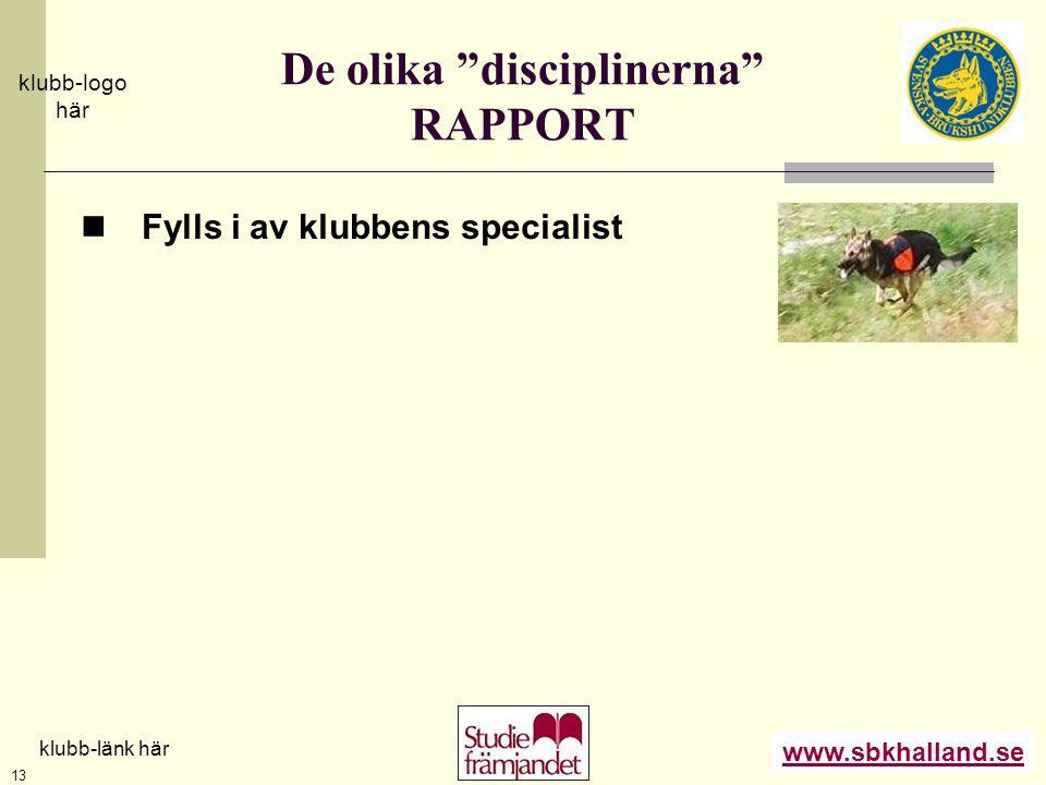 """www.sbkhalland.se klubb-logo här klubb-länk här 13 De olika """"disciplinerna"""" RAPPORT  Fylls i av klubbens specialist"""