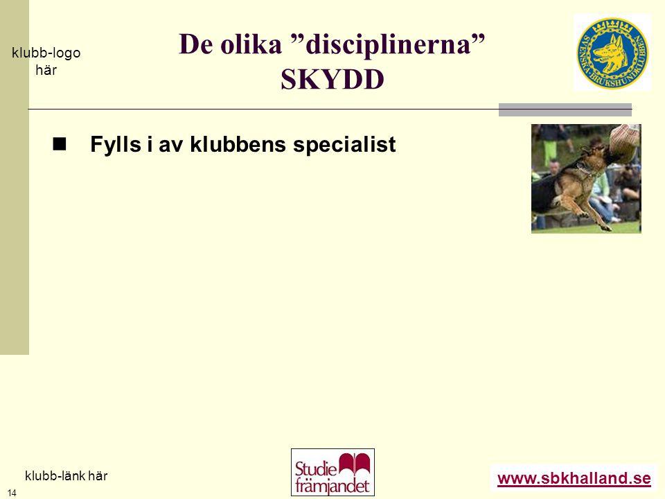 """www.sbkhalland.se klubb-logo här klubb-länk här 14 De olika """"disciplinerna"""" SKYDD  Fylls i av klubbens specialist"""