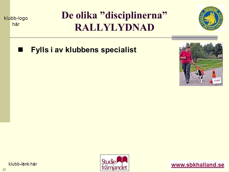 """www.sbkhalland.se klubb-logo här klubb-länk här 17 De olika """"disciplinerna"""" RALLYLYDNAD  Fylls i av klubbens specialist"""