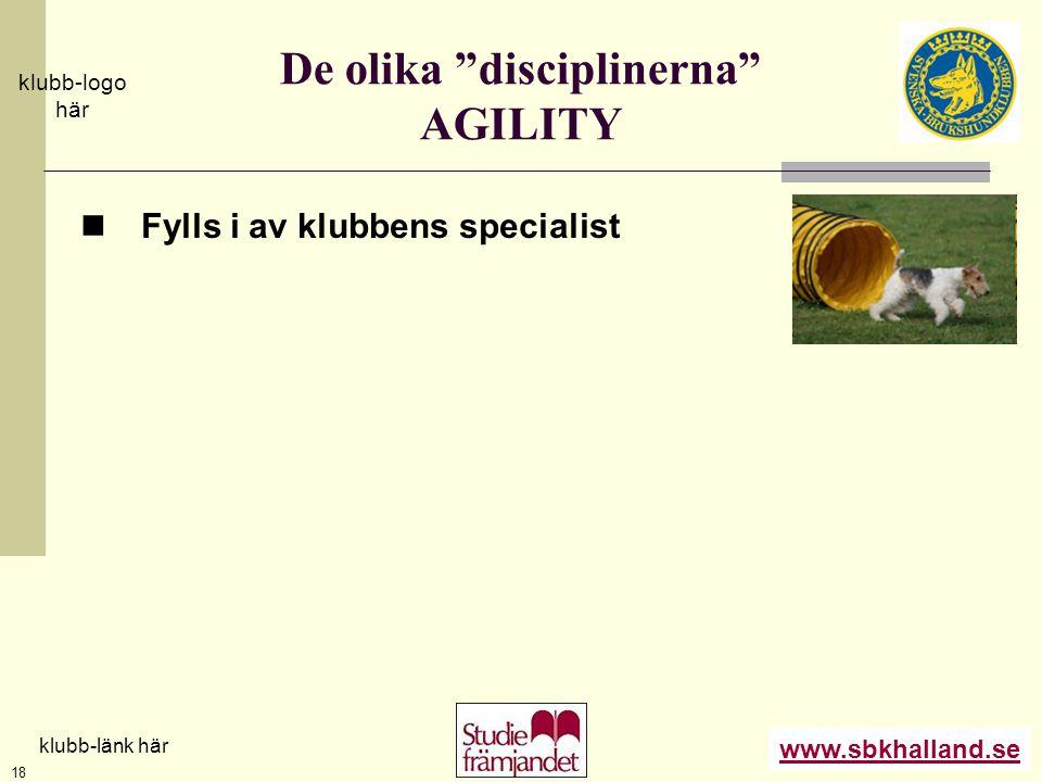 """www.sbkhalland.se klubb-logo här klubb-länk här 18 De olika """"disciplinerna"""" AGILITY  Fylls i av klubbens specialist"""