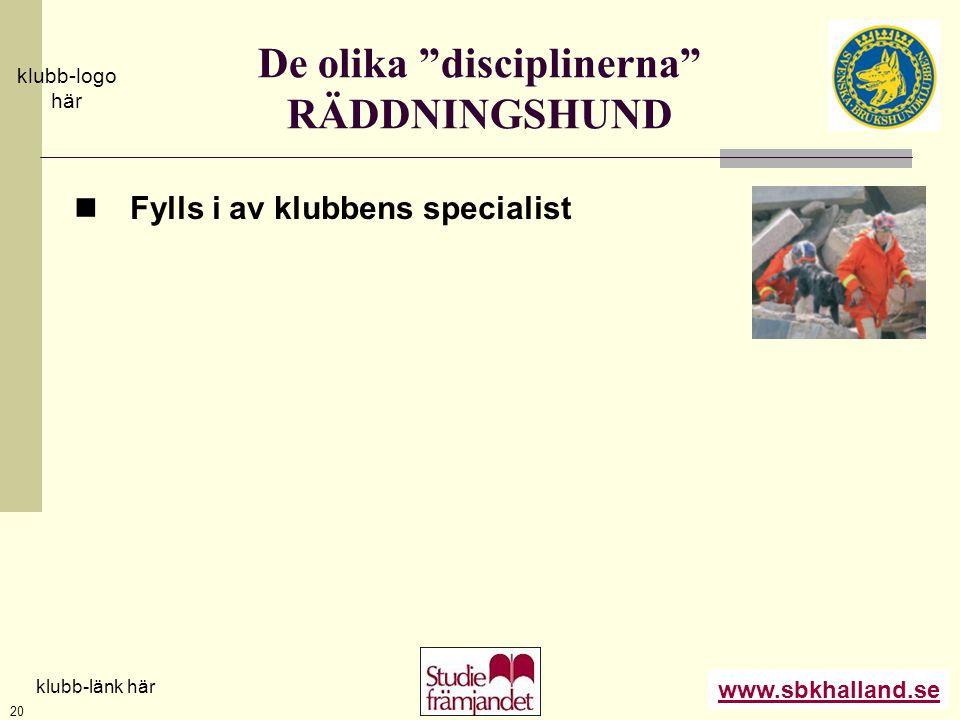 """www.sbkhalland.se klubb-logo här klubb-länk här 20 De olika """"disciplinerna"""" RÄDDNINGSHUND  Fylls i av klubbens specialist"""