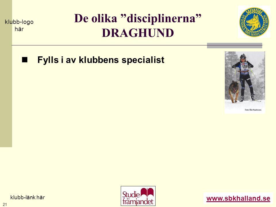 """www.sbkhalland.se klubb-logo här klubb-länk här 21 De olika """"disciplinerna"""" DRAGHUND  Fylls i av klubbens specialist"""