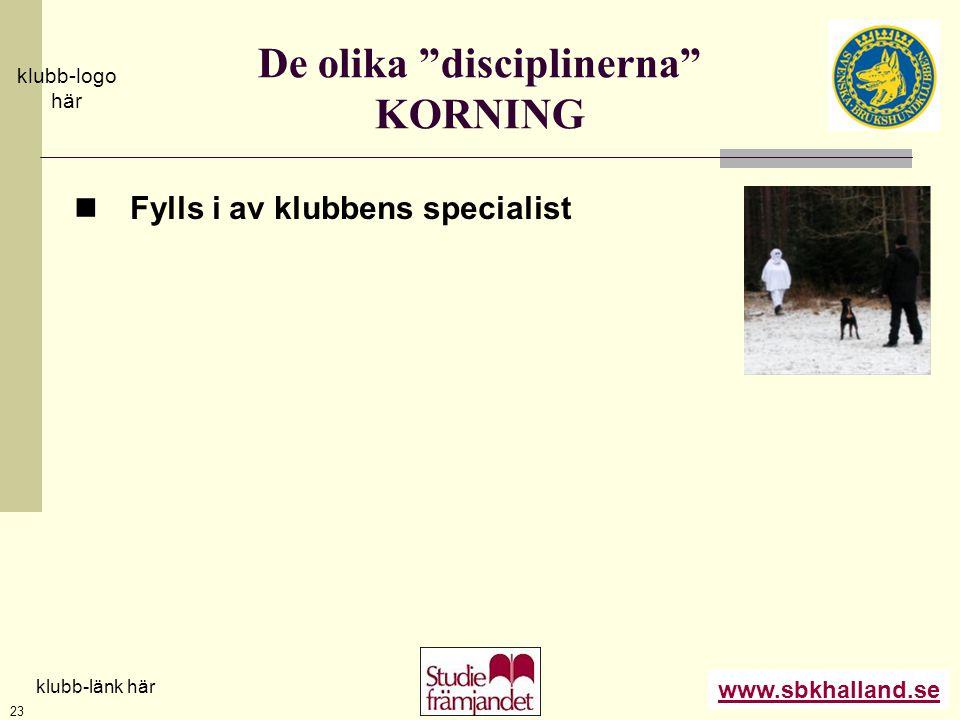 """www.sbkhalland.se klubb-logo här klubb-länk här 23 De olika """"disciplinerna"""" KORNING  Fylls i av klubbens specialist"""