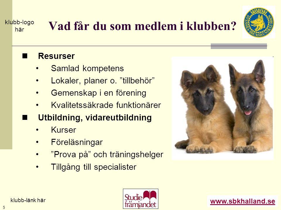 """www.sbkhalland.se klubb-logo här klubb-länk här 5 Vad får du som medlem i klubben?  Resurser •Samlad kompetens •Lokaler, planer o. """"tillbehör"""" •Gemen"""