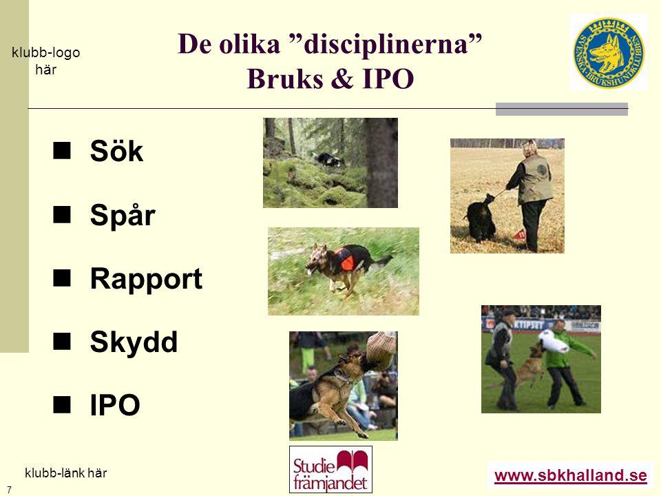 """www.sbkhalland.se klubb-logo här klubb-länk här 7 De olika """"disciplinerna"""" Bruks & IPO  Sök  Spår  Rapport  Skydd  IPO"""