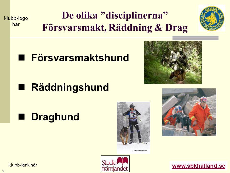 """www.sbkhalland.se klubb-logo här klubb-länk här 9 De olika """"disciplinerna"""" Försvarsmakt, Räddning & Drag  Försvarsmaktshund  Räddningshund  Draghun"""