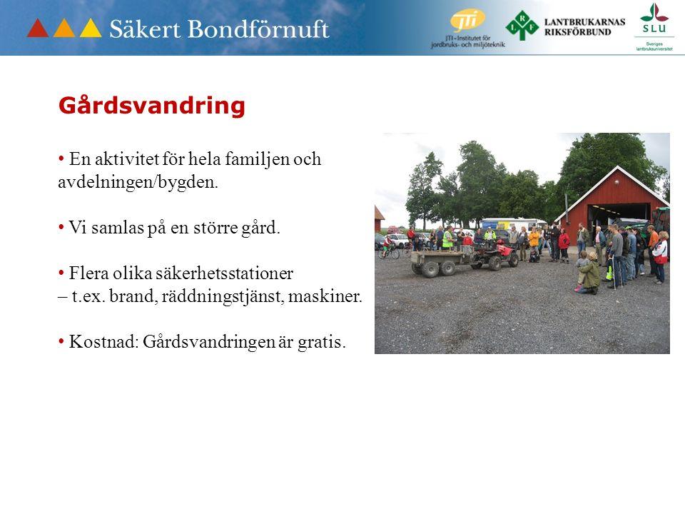 Gårdsvandring • En aktivitet för hela familjen och avdelningen/bygden.