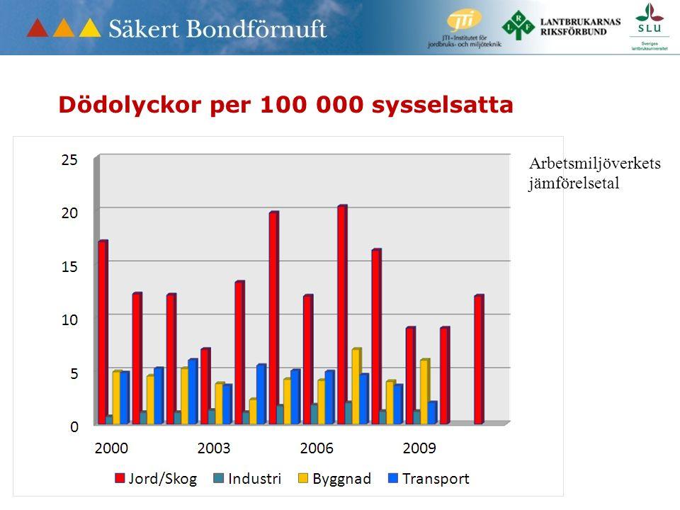 Arbetsmiljöverkets jämförelsetal Dödolyckor per 100 000 sysselsatta