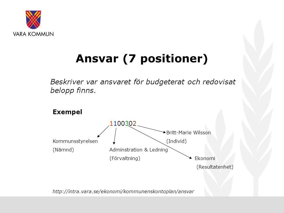 Ansvar (7 positioner) Beskriver var ansvaret för budgeterat och redovisat belopp finns.