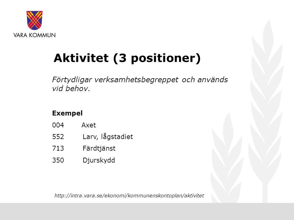 Aktivitet (3 positioner) Förtydligar verksamhetsbegreppet och används vid behov.