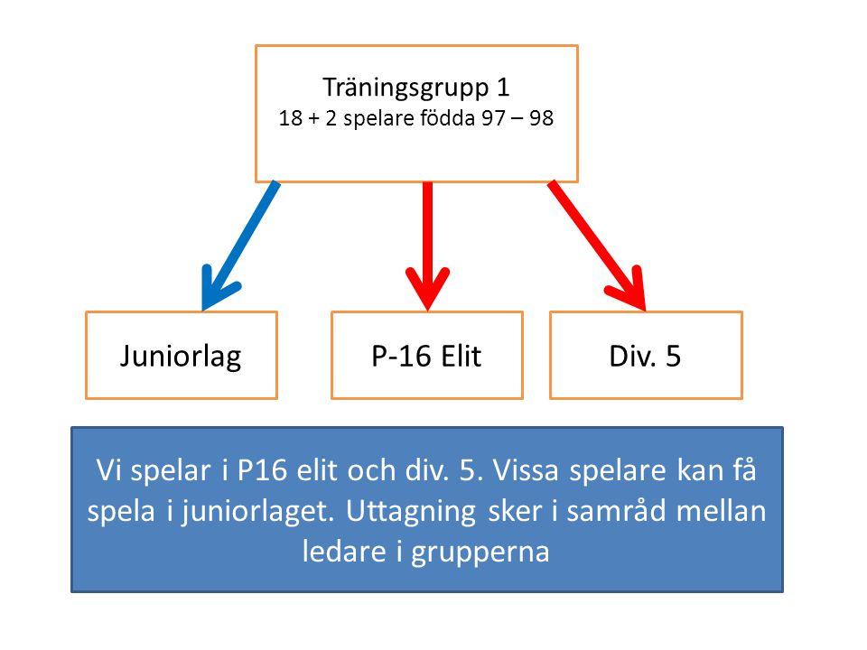 Träningsgrupp 1 18 + 2 spelare födda 97 – 98 Juniorlag P-16 ElitDiv.