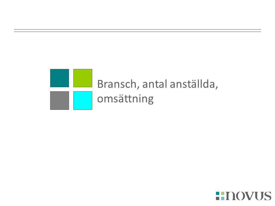 Bransch, antal anställda, omsättning