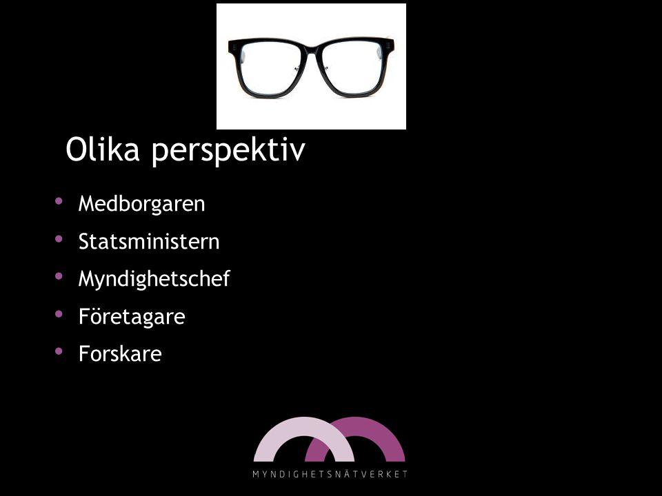 Olika perspektiv • Medborgaren • Statsministern • Myndighetschef • Företagare • Forskare Bild från www.eoe-glasses.com
