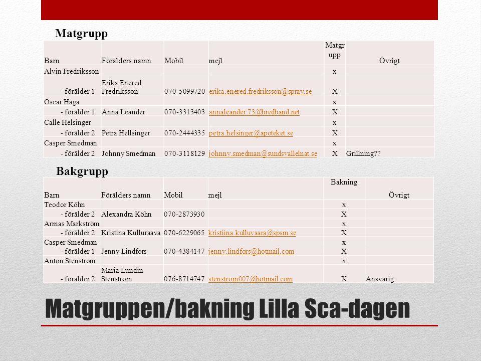 Matgruppen/bakning Lilla Sca-dagen BarnFörälders namnMobilmejl Matgr upp Övrigt Alvin Fredriksson x - förälder 1 Erika Enered Fredriksson070-5099720er