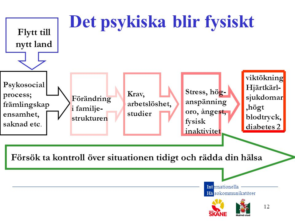 Internationella Hälsokommunikatörer 12 Det psykiska blir fysiskt Flytt till nytt land Psykosocial process; främlingskap ensamhet, saknad etc. Förändri