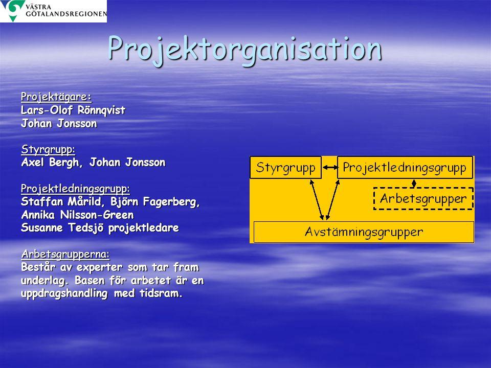 Projektorganisation Projektägare: Lars-Olof Rönnqvist Johan Jonsson Styrgrupp: Axel Bergh, Johan Jonsson Projektledningsgrupp: Staffan Mårild, Björn F