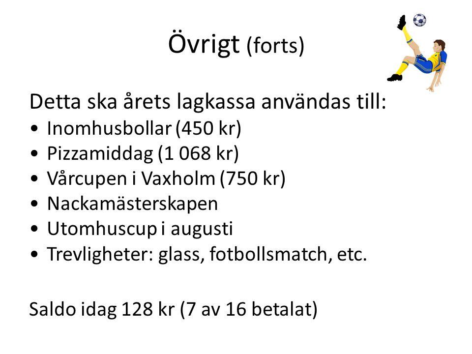Övrigt (forts) Detta ska årets lagkassa användas till: •Inomhusbollar (450 kr) •Pizzamiddag (1 068 kr) •Vårcupen i Vaxholm (750 kr) •Nackamästerskapen •Utomhuscup i augusti •Trevligheter: glass, fotbollsmatch, etc.