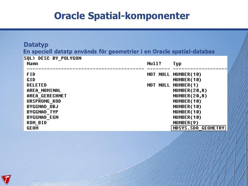 Datatyp En speciell datatp används för geometrier i en Oracle spatial-databas Oracle Spatial-komponenter