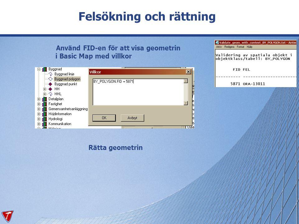 Felsökning och rättning Använd FID-en för att visa geometrin i Basic Map med villkor Rätta geometrin