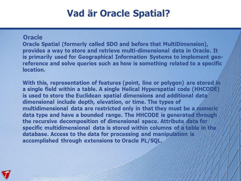Annan definition Oracle Spatial består av en mängd funktioner och procedurer som är inbyggda i databasen vilket möjliggör att spatiala (geografiska) data kan lagras, läsas och analyseras.