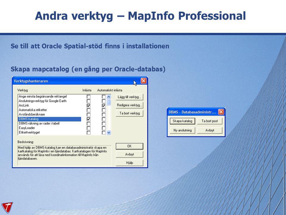 Andra verktyg – MapInfo Professional Se till att Oracle Spatial-stöd finns i installationen Skapa mapcatalog (en gång per Oracle-databas)
