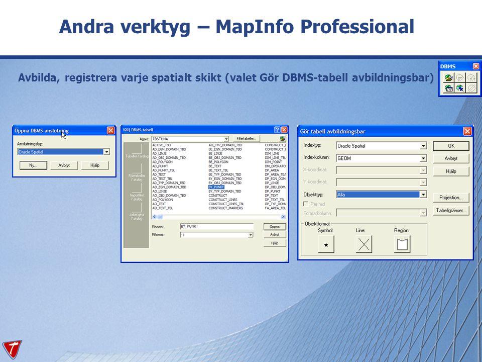 Andra verktyg – MapInfo Professional Avbilda, registrera varje spatialt skikt (valet Gör DBMS-tabell avbildningsbar)