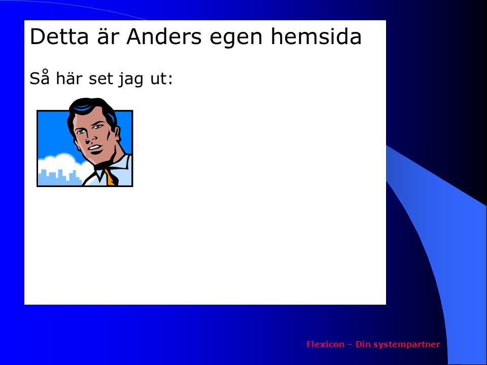 Detta är Anders egen hemsida Så här set jag ut: Flexicon – Din systempartner