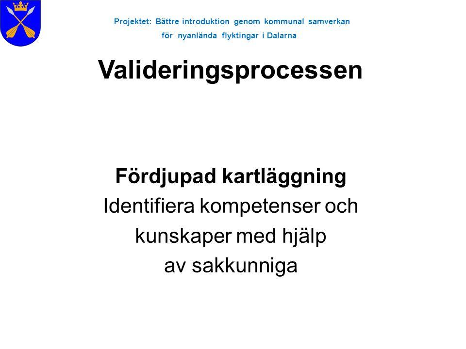 Projektet: Bättre introduktion genom kommunal samverkan för nyanlända flyktingar i Dalarna Fördjupad kartläggning Identifiera kompetenser och kunskape