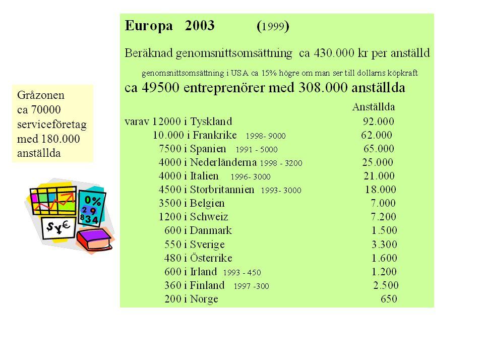 Gråzonen ca 70000 serviceföretag med 180.000 anställda