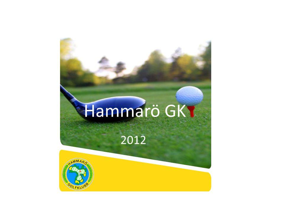 Verksamhetsinriktning Hammarö GK Verksamhetsidé Hammarö GK skall erbjuda sina medlemmar och gäster en stimulerande och utmanande golfupplevelse i en trygg och stabil verksamhet med god ekonomi.