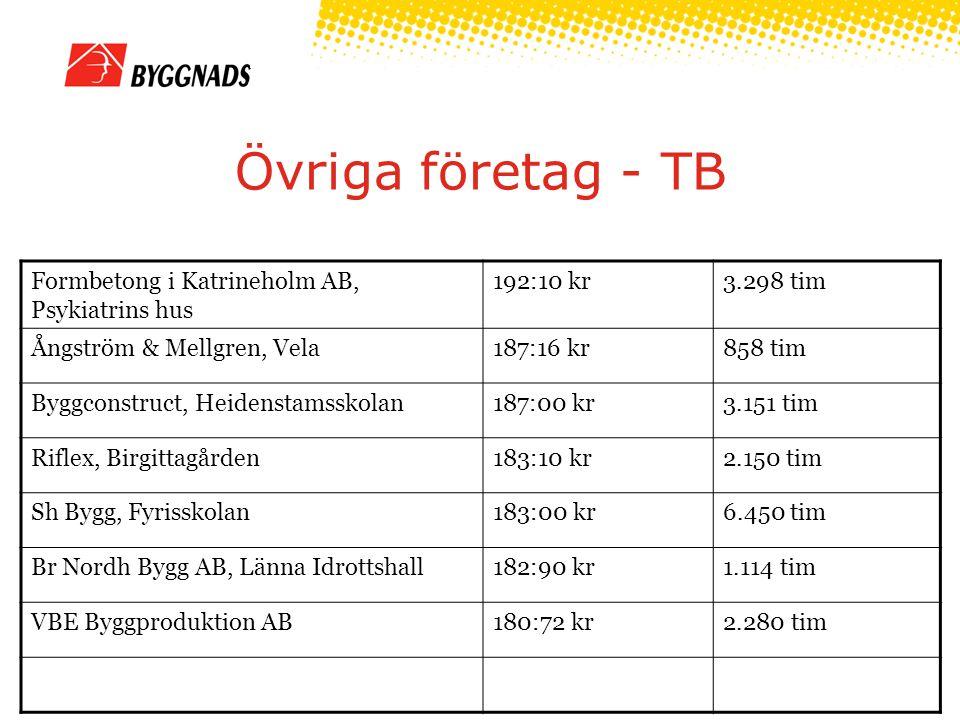 Övriga företag - TB Formbetong i Katrineholm AB, Psykiatrins hus 192:10 kr3.298 tim Ångström & Mellgren, Vela187:16 kr858 tim Byggconstruct, Heidenstamsskolan187:00 kr3.151 tim Riflex, Birgittagården183:10 kr2.150 tim Sh Bygg, Fyrisskolan183:00 kr6.450 tim Br Nordh Bygg AB, Länna Idrottshall182:90 kr1.114 tim VBE Byggproduktion AB180:72 kr2.280 tim