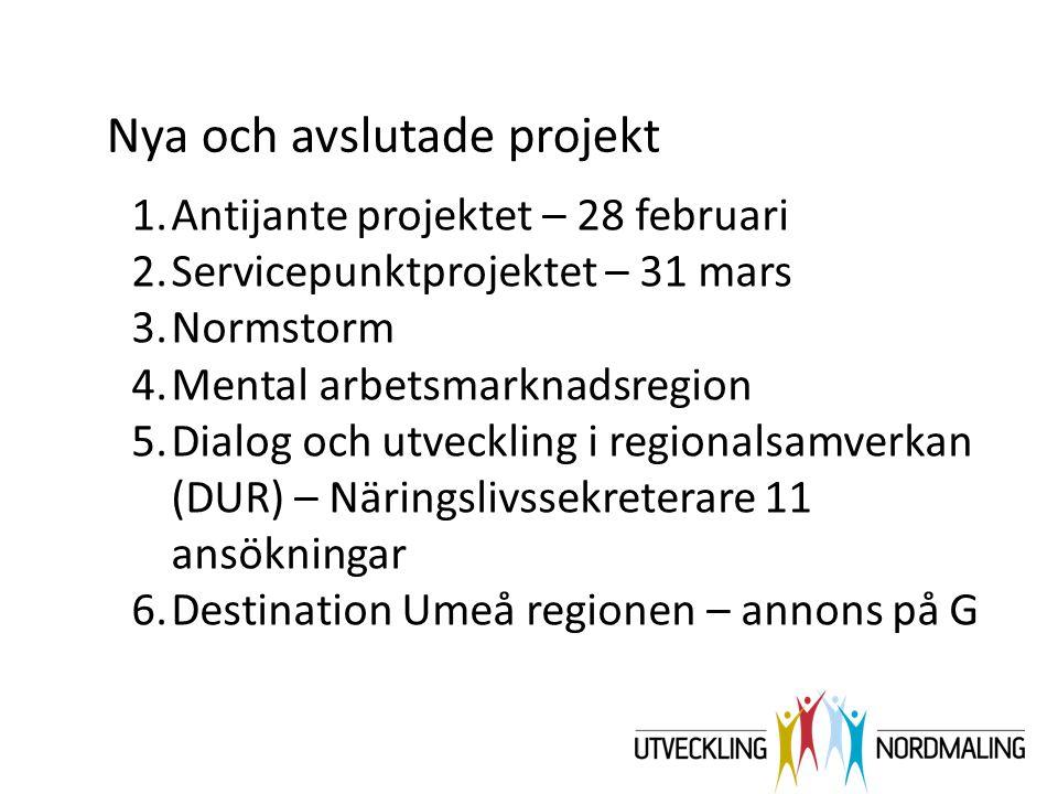 1.Antijante projektet – 28 februari 2.Servicepunktprojektet – 31 mars 3.Normstorm 4.Mental arbetsmarknadsregion 5.Dialog och utveckling i regionalsamv