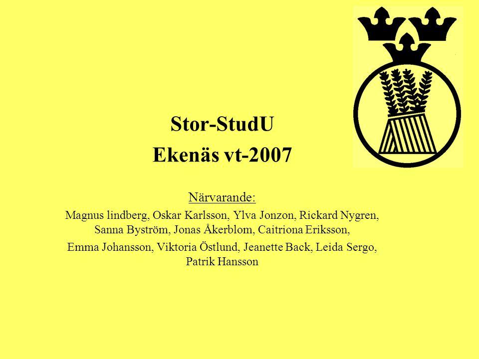 Stor-StudU Ekenäs vt-2007 Närvarande: Magnus lindberg, Oskar Karlsson, Ylva Jonzon, Rickard Nygren, Sanna Byström, Jonas Åkerblom, Caitriona Eriksson,