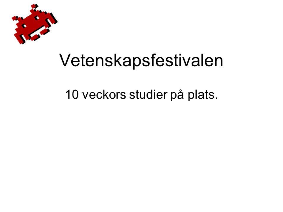 Vetenskapsfestivalen 10 veckors studier på plats.