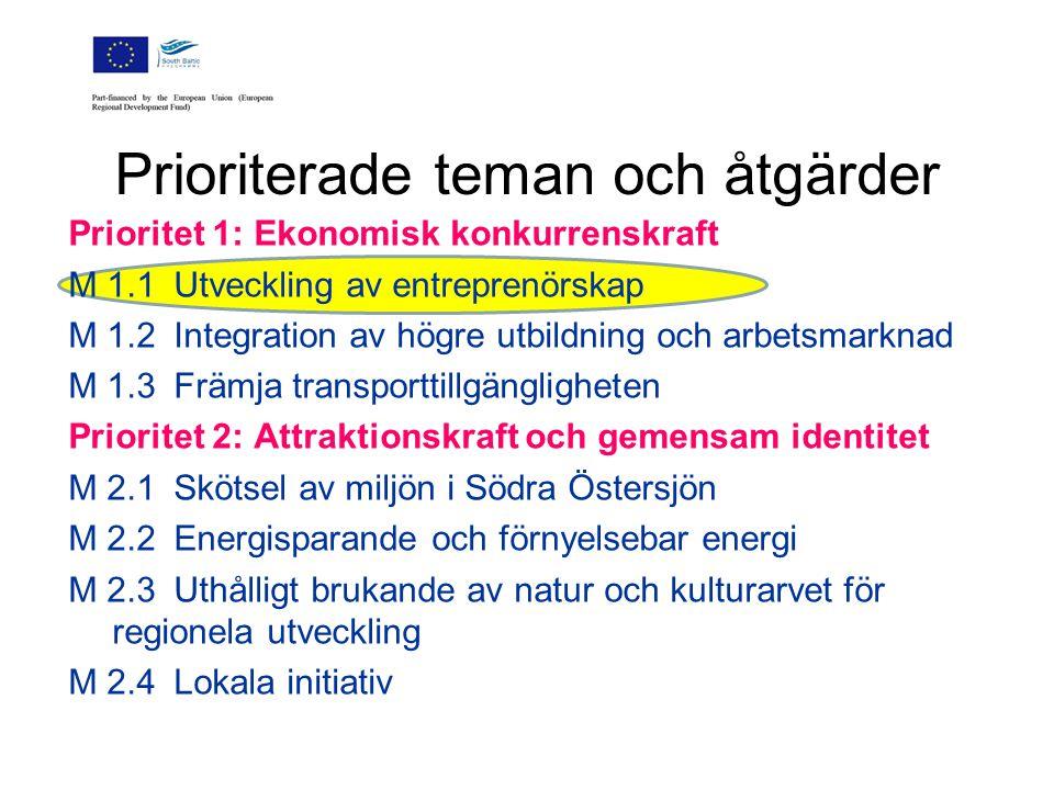 Utpekade resultat  Uthålliga nätverk som främjar samarbete  Konceptuella dokument  Direktkontakt människa till människa  Påverkan på den socio-ekonomiskt uthålliga utvecklingen i Södra Österjöregionen  Gränsöverskridande samarbete -Gemensamma lösningar för konkreta lokala och regionala problem -Problemet ska ha relevans för Södra Östersjöregionen som helhet.
