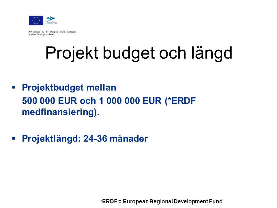  Projektbudget mellan 500 000 EUR och 1 000 000 EUR (*ERDF medfinansiering).