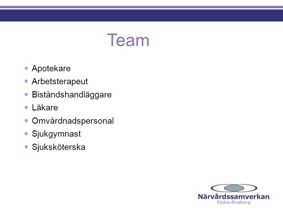  Apotekare  Arbetsterapeut  Biståndshandläggare  Läkare  Omvårdnadspersonal  Sjukgymnast  Sjuksköterska Team
