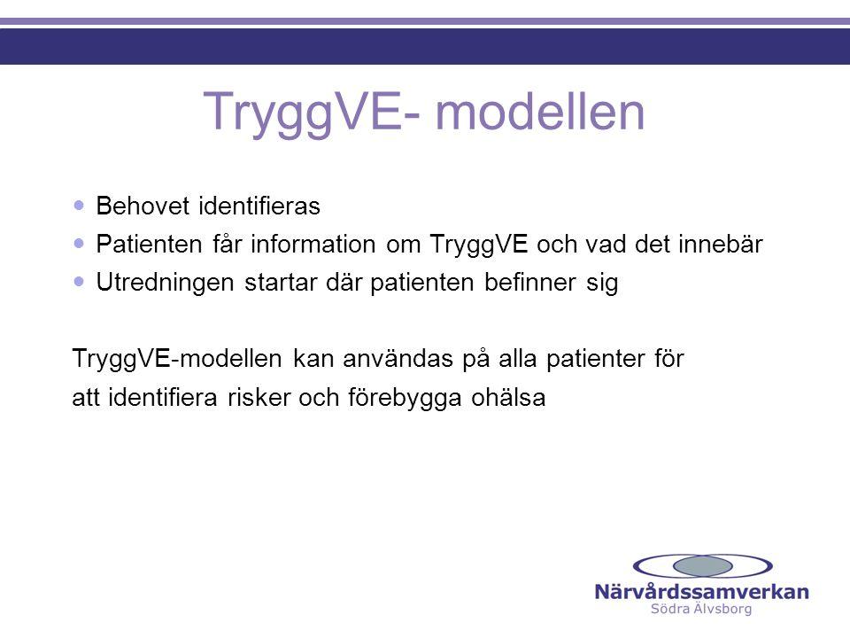 TryggVE- modellen  Behovet identifieras  Patienten får information om TryggVE och vad det innebär  Utredningen startar där patienten befinner sig T