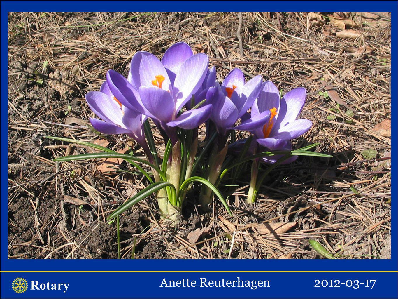 Rotary Anette Reuterhagen2012-03-17 Samhällsprojekt med inriktning på drogförebyggande arbete Drog är en substans som verkar berusande/sinnesförändrande och/eller beroendeframkallande.