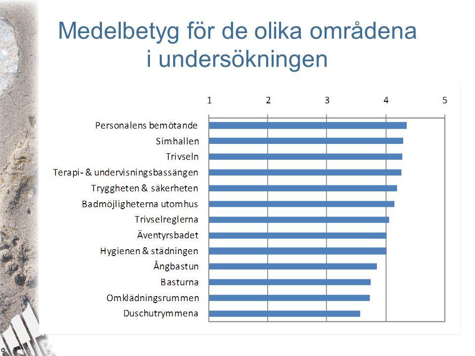 Medelbetyg för de olika områdena i undersökningen